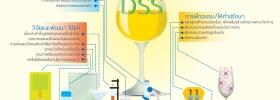 บริการวิทยาศาสตร์เพื่ออุตสาหกรรมแก้วและกระจก